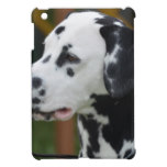 Dalmatian with Spots Case For The iPad Mini