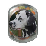 Dalmatian with Spots Jelly Belly Candy Jar