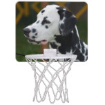 Dalmatian with Spots Mini Basketball Backboard