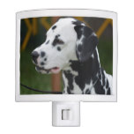 Dalmatian with Spots Night Light