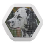 Dalmatian with Spots White Bluetooth Speaker
