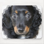 Daschund Puppy Dog Mouse Pad