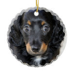 Daschund Puppy Dog Ornament