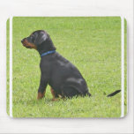 Doberman Pinscher Puppy Mouse Pad