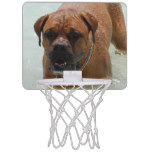 Drooling Bordeaux Mastiff Mini Basketball Hoop