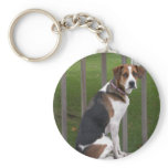 English Foxhound Keychain