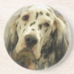 English Setter Dog Coasters