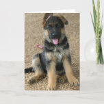 German Shepherd Puppy Greeting Card