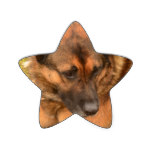 German Shepherd with One Floppy Ear Star Sticker