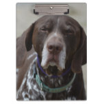 German Shorthaired Pointer Dog Clipboard
