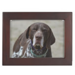 German Shorthaired Pointer Dog Memory Box