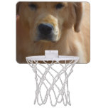 Golden Pup Mini Basketball Hoop