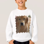 Golden Pup Sweatshirt