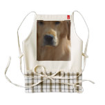 Golden Pup Zazzle HEART Apron