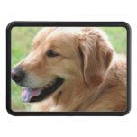 golden-retriever-33 hitch cover