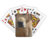Gorgeous Golden Retriever Playing Cards