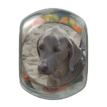 Gorgeous Weimaraner Glass Candy Jar