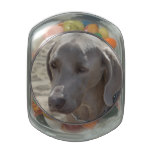 Gorgeous Weimaraner Jelly Belly Candy Jar