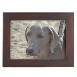 Gorgeous Weimaraner Keepsake Box