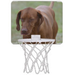 Great Vizsla Dog Mini Basketball Hoop