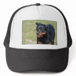 Guileless Rottweiler Trucker Hat