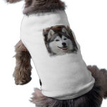 Husky Dog Shirt