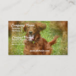 Irish Setter Business Card