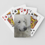 kuvasz-3.jpg playing cards
