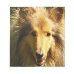 Lassie Collie  Notepad
