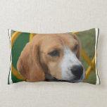 Lovable Beagle Lumbar Pillow
