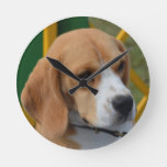 Lovable Beagle Round Clock
