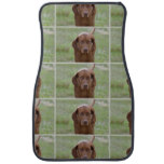 Lovable Vizsla Car Mat