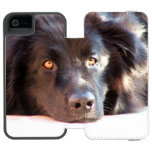 newfoundland-3 wallet case for iPhone SE/5/5s