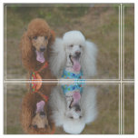 Pair of Poodles Fabric