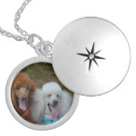 Pair of Poodles Locket Necklace
