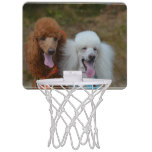 Pair of Poodles Mini Basketball Backboard