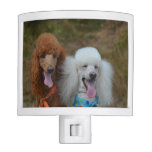 Pair of Poodles Night Light