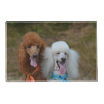 Pair of Poodles Placemat