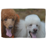 Pair of Poodles Towel