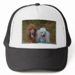 Pair of Poodles Trucker Hat