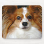 Papillon Mouse Pad
