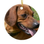 Picture of a Dachshund Ornament