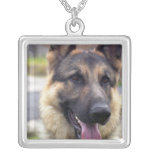 Picture of German Shepherd Business Card Silver Plated Necklace