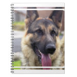 Picture of German Shepherd Notebook