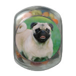 Poised Pug Jelly Belly Candy Jar