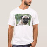 Pug Puppy Dog Men's T-Shirt