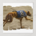 Racing Greyhound Dog Invitation
