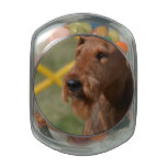 Really Cute Airedale Terrier Glass Jar