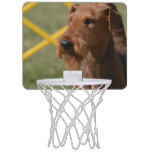 Really Cute Airedale Terrier Mini Basketball Hoop