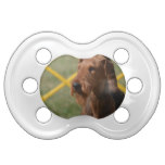 Really Cute Airedale Terrier Pacifier